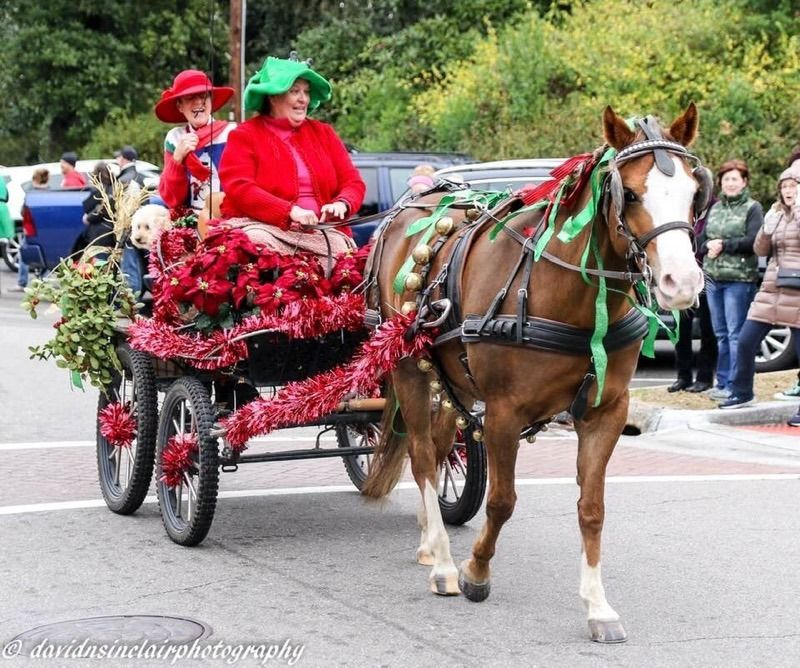 2019 Christmas Carriage Parade